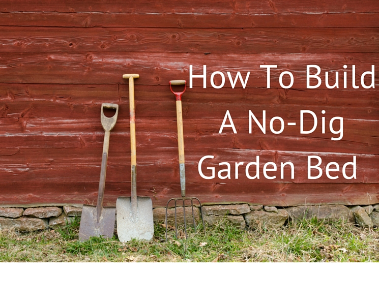 How To Build A No-Dig Garden Bed (1)
