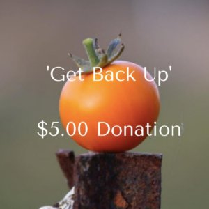 get-back-up2-00-donation-1