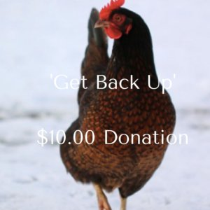 get-back-up2-00-donation-2