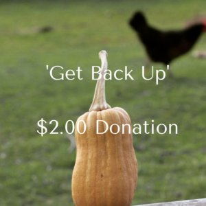 get-back-up2-00-donation